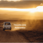 TrueScore – the best assessment measure for a used car