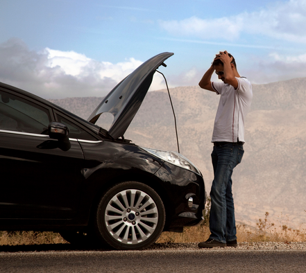 roadside-coverage-closeup